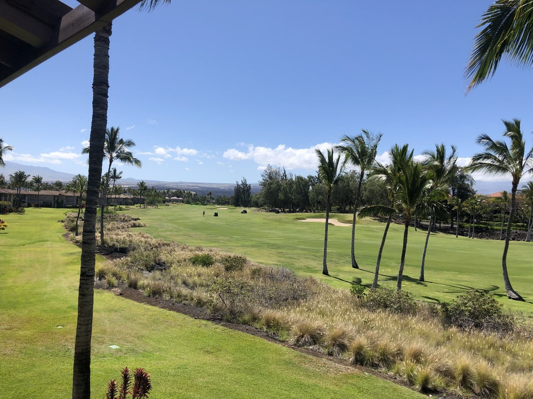 View from Waikoloa Town Home, on behalf of April Lee of Kohala Real Estate and 2nd Home Services LLC